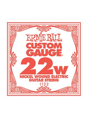 Ernie Ball .022w nickle string
