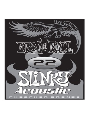 Ernie Ball 022 phosphor string