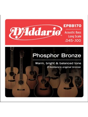 D'Addario Acoustic Bass 45-100