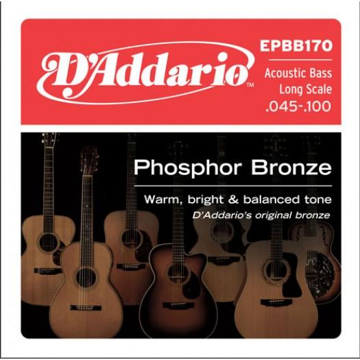 D'Addario Acoustic Bass 45-100