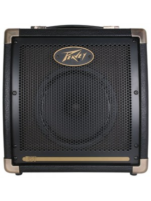 Peavey Ecoustic E20 Amplifier
