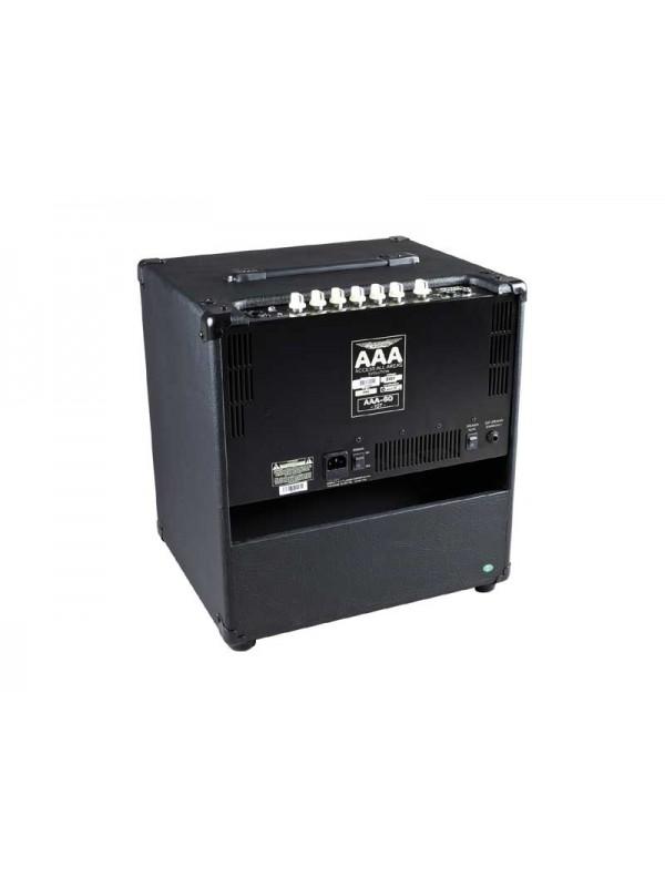Ashdown AAA 60-10 Bass Amp